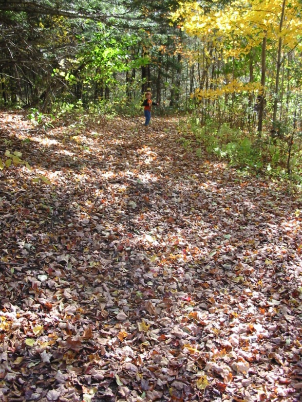 Dana on the path of fallen leaves
