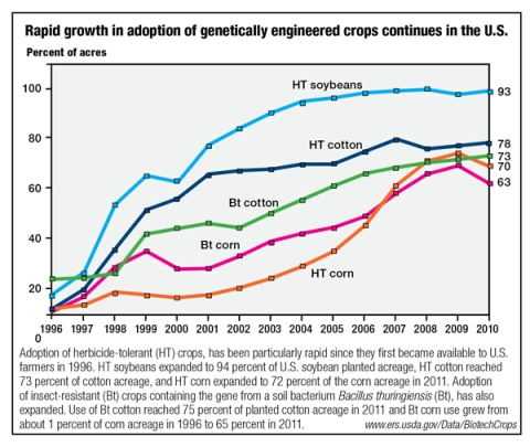 In the US genetic modification has become standard for corporate farms