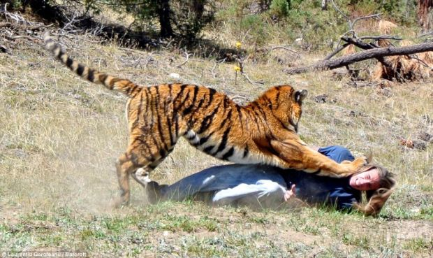 In nature we have no inherent rights - we're just tiger food!